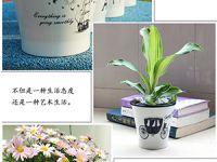 扇形塑料花盆